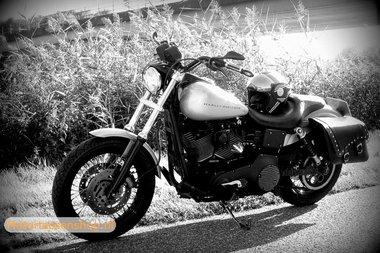 Harley Davidson Dyna met motortas, zwart, 2x22L, E4095(2)